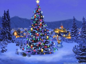 Christmas-Tree-Nature1024-226431_800